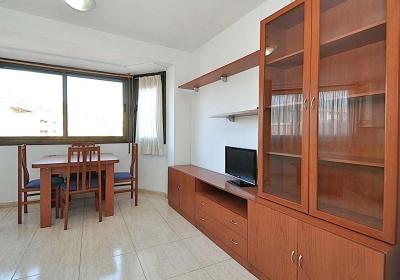 Apartreception Apartaments - Oliva